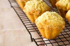 Streusel βρωμών της Apple κολοκύθας Muffins στην ψύξη του ραφιού Εκλεκτικό φ Στοκ Φωτογραφίες