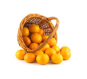Strewed tangerines from wicker basket lays isolate Royalty Free Stock Photography