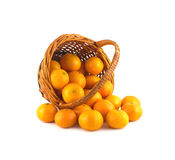 Strewed tangerines from wicker basket lays isolated Stock Photos