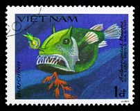 Striated Frogfish (Antennarius tridens), Fish serie, circa 1984. MOSCOW, RUSSIA - SEPTEMBER 26, 2018: A stamp printed in Vietnam shows Striated Frogfish ( royalty free stock images
