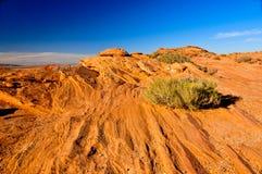 striated stenigt för arizona liggande Arkivfoto