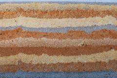 The striations, natural earthtone colors, and textures of a ramm Royalty Free Stock Photography