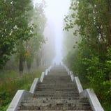 Strichleiter aufwärts im Park Stockbilder