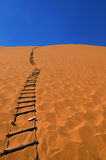 Strichleiter in der Wüste Lizenzfreie Stockfotos