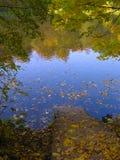 Strichleiter zum Herbstsee Stockbild