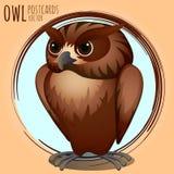 Strict brown owl, cartoon series Stock Photos