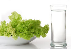 Strict diet. Lettuce and water royalty free stock image