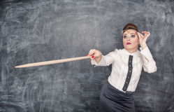 Strict teacher showing on something by wooden pointer Stock Photography