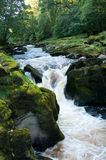 Strid at Bolton Abbey Stock Photos
