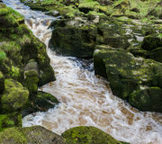The strid Royalty Free Stock Image