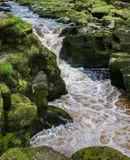 The strid Stock Images