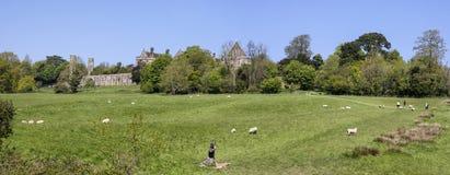 Stridabbotskloster och strid av Hastings slagfältpanorama Arkivbilder