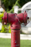 Stridighet för brand för brandpostslanganslutning arkivbild