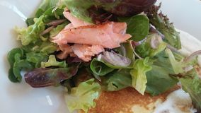 Stridighetfetma/Salmon And Salad On Potato pannkaka Royaltyfri Bild