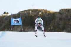 STRIEDINGER Otmar i FIS alpina Ski World Cup - 3rd toppna MÄN Royaltyfria Bilder