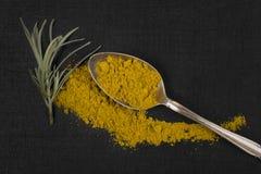 Strigli la spezia del curry e della pianta su fondo nero Fotografia Stock Libera da Diritti