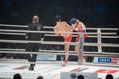 Strijd in de ring Stock Foto