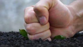 Strijd tegen het tuinieren Vernietiging van het ecosysteem stock videobeelden