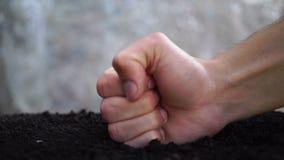 Strijd tegen het tuinieren Vernietiging van het ecosysteem stock footage