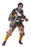 Strijder met het zwaard Stock Afbeelding