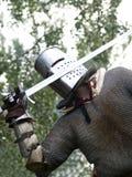 Strijder met zwaard Royalty-vrije Stock Fotografie
