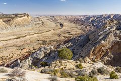 Strike Valley Juniper. Expansive view of the Waterpocket Fold monocline from the Strike Valley Overlook in Capitol Reef National Park, Utah royalty free stock photo