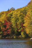 Striking fall foliage on shore of Russell Pond, New Hampshire. Royalty Free Stock Image