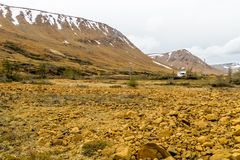 Striking yellow rocks of the Tablelands, Gros Morne National Par royalty free stock photo