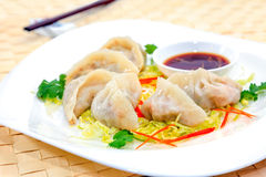 Strikt vegetarian Pan Fried Dumpling Arkivfoton