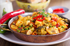 Strikt vegetariancurry med tofuen och grönsaker Arkivfoton