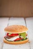 Strikt vegetarianhamburgare Fotografering för Bildbyråer