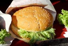 Strikt vegetarianhamburgare med sallad royaltyfria foton