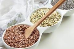 Strikt vegetariankällor av Omega-3 Royaltyfri Bild