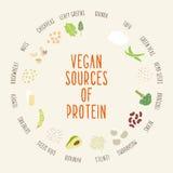 Strikt vegetariankällor av protein arkivbild