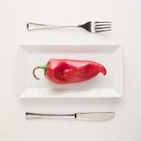 Strikt vegetarianlåg-carben bantar rå oklippt röd peppar på den rektangulära plattan Royaltyfri Foto
