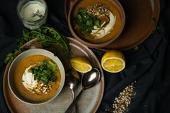 Strikt vegetarianlinssoppa i chiaroscuro royaltyfri foto