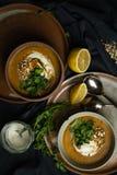 Strikt vegetarianlinssoppa i chiaroscuro arkivfoton