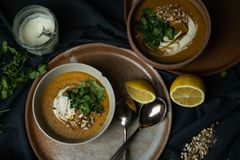 Strikt vegetarianlinssoppa i chiaroscuro arkivbilder