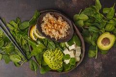 Strikt vegetarianlunch med råriers, avokadot och tofuen på en mörk bakgrund Royaltyfria Bilder