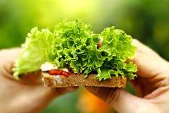 Strikt vegetarianrostat bröd Royaltyfri Bild