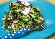 Strikt vegetariansallad Royaltyfria Bilder