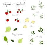 Strikt vegetariansallad Arkivbilder