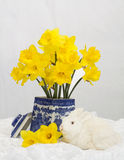 White Rabbit and Daffodils Royalty Free Stock Image