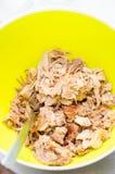 Strimlat grisköttkött Royaltyfri Bild