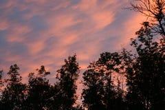 Strimmig himmel Royaltyfria Bilder