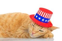 Strimmig kattkatt som lägger på reflekterande yttersida som bär den patriotiska hatten Arkivfoto