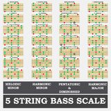 5 string bass scale minor for bass player teacher  Royalty Free Stock Image