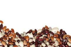 String bean Royalty Free Stock Photo