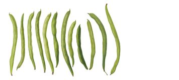 String bean raw food clipping paths isolate Royalty Free Stock Photo