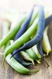 String beans. Pile of purple yellow and green string beans on cutting board Stock Photography
